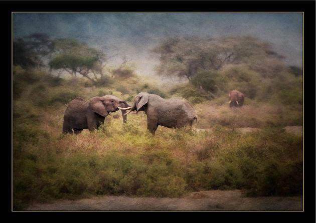 ElephantPainting